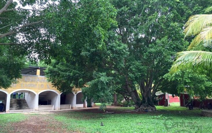 Foto de rancho en venta en  , molas, mérida, yucatán, 1719412 No. 20