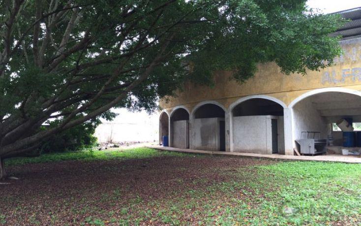 Foto de rancho en venta en, molas, mérida, yucatán, 1719412 no 22