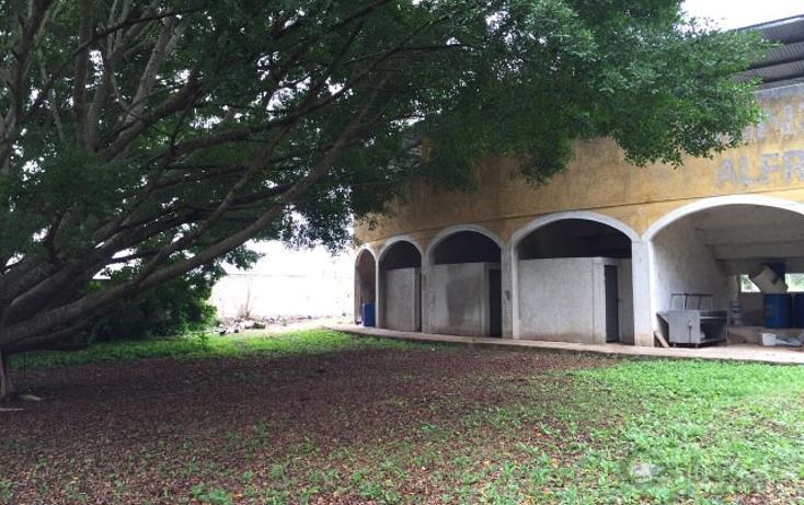 Foto de rancho en venta en  , molas, mérida, yucatán, 1719412 No. 22