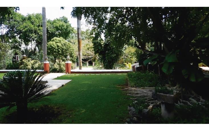 Foto de departamento en venta en  , molas, mérida, yucatán, 1951171 No. 23