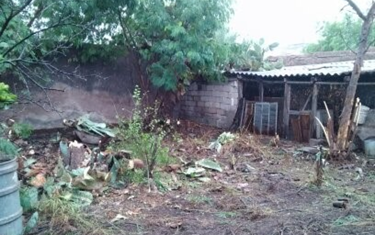 Foto de terreno habitacional en venta en  , monclova centro, monclova, coahuila de zaragoza, 1225963 No. 07