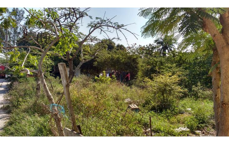 Foto de terreno habitacional en venta en  , monte alto, altamira, tamaulipas, 1525263 No. 03
