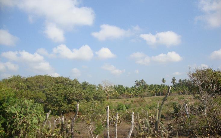 Foto de terreno habitacional en venta en  , monte alto, san marcos, guerrero, 1124147 No. 03