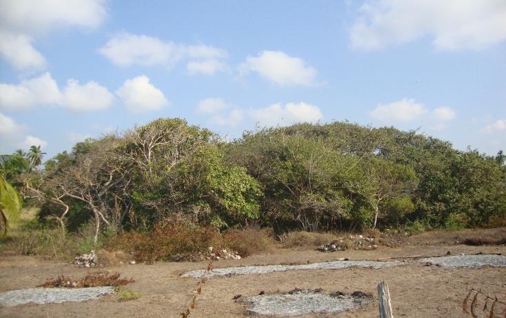 Foto de terreno habitacional en venta en  , monte alto, san marcos, guerrero, 1124147 No. 05