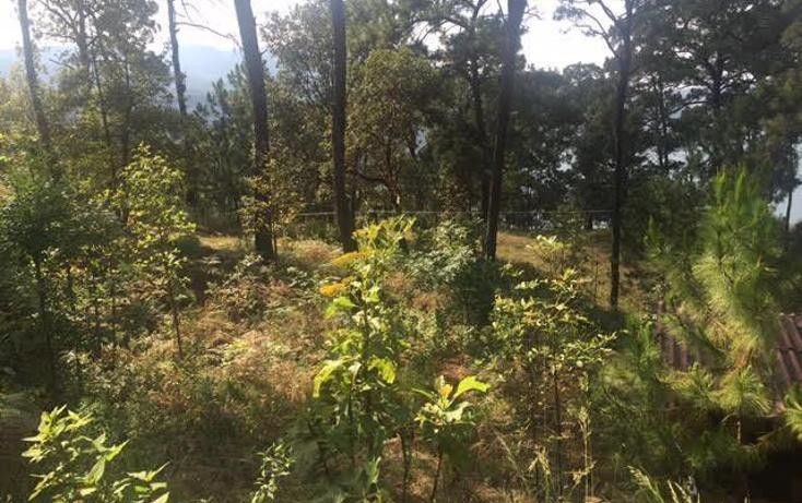 Foto de terreno habitacional en venta en  , monte alto, valle de bravo, m?xico, 1699538 No. 02