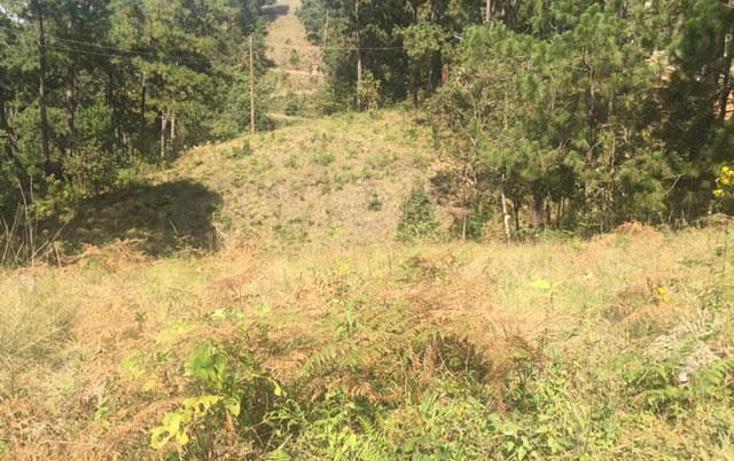Foto de terreno habitacional en venta en  , monte alto, valle de bravo, m?xico, 1699538 No. 03