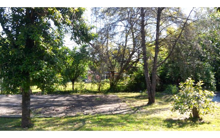 Foto de terreno habitacional en venta en  , monte bello, juárez, nuevo león, 1556304 No. 05