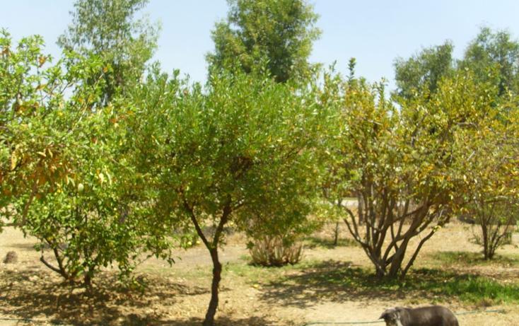 Foto de casa en venta en monte blanco 15 , comanjilla, silao, guanajuato, 1832420 No. 03