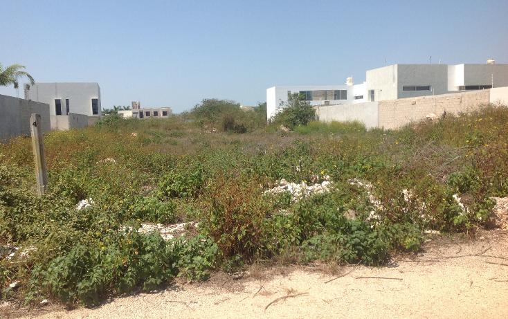Foto de terreno habitacional en venta en  , montebello, mérida, yucatán, 1111009 No. 02