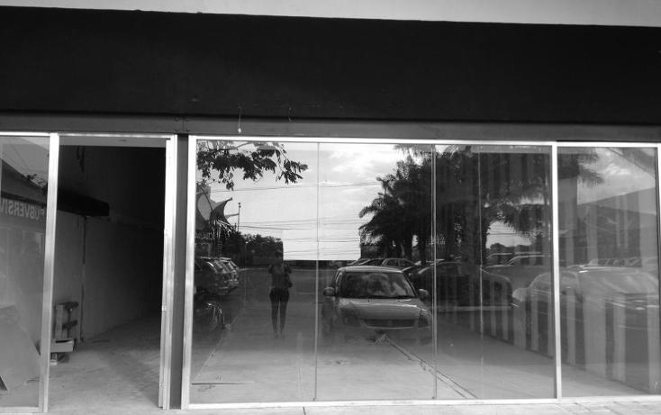 Foto de local en renta en  , montebello, mérida, yucatán, 1252977 No. 07