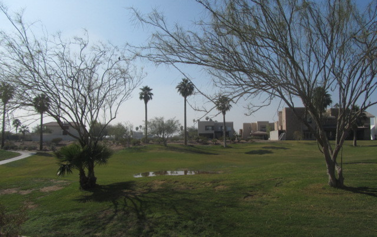 Foto de terreno habitacional en venta en  , montebello, torre?n, coahuila de zaragoza, 1421207 No. 04