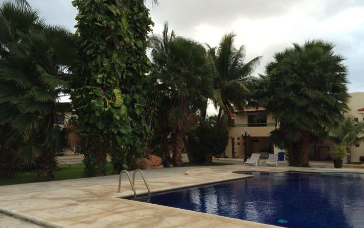 Foto de casa en renta en  , montecristo, m?rida, yucat?n, 1061059 No. 08