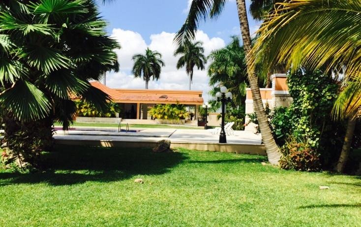 Foto de casa en renta en  , montecristo, mérida, yucatán, 1181715 No. 02