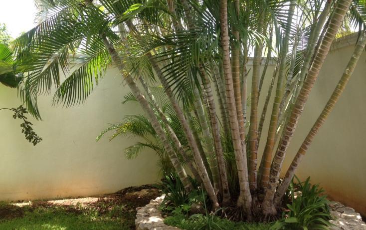Foto de casa en venta en  , montecristo, mérida, yucatán, 1301885 No. 06