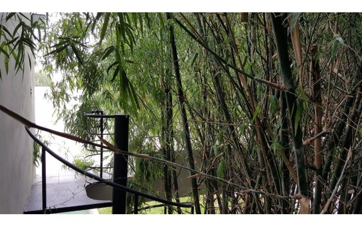 Foto de casa en venta en  , montecristo, mérida, yucatán, 1339641 No. 07