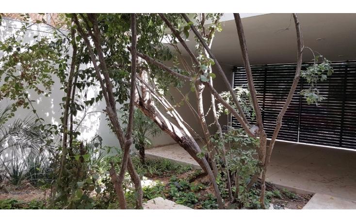 Foto de casa en venta en  , montecristo, mérida, yucatán, 1339641 No. 08
