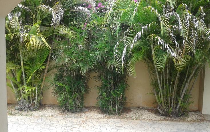 Foto de casa en renta en  , montecristo, mérida, yucatán, 1387159 No. 04