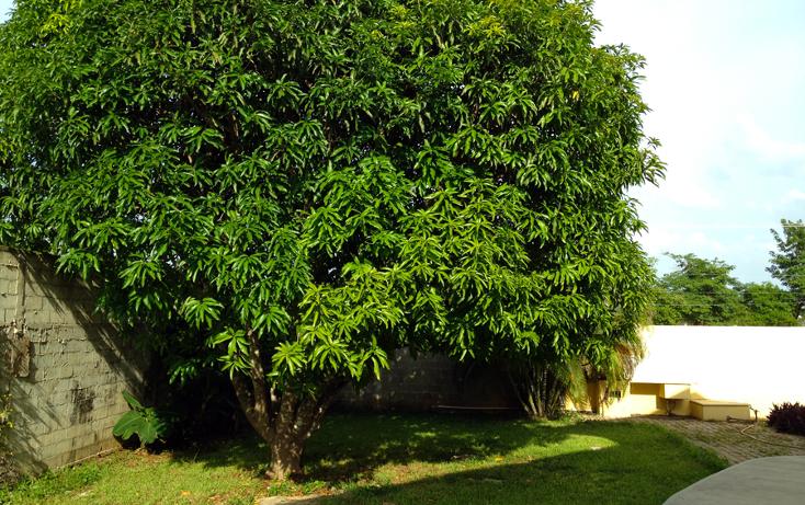 Foto de casa en venta en  , montecristo, m?rida, yucat?n, 1389567 No. 21