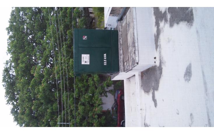 Foto de local en renta en  , montejo, mérida, yucatán, 1272441 No. 18