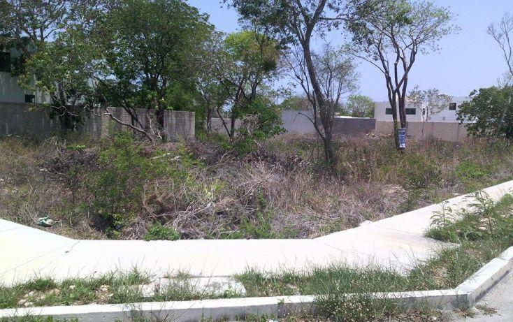 Foto de terreno habitacional en venta en, montejo, mérida, yucatán, 1929852 no 03