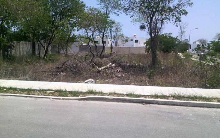 Foto de terreno habitacional en venta en, montejo, mérida, yucatán, 1929852 no 04