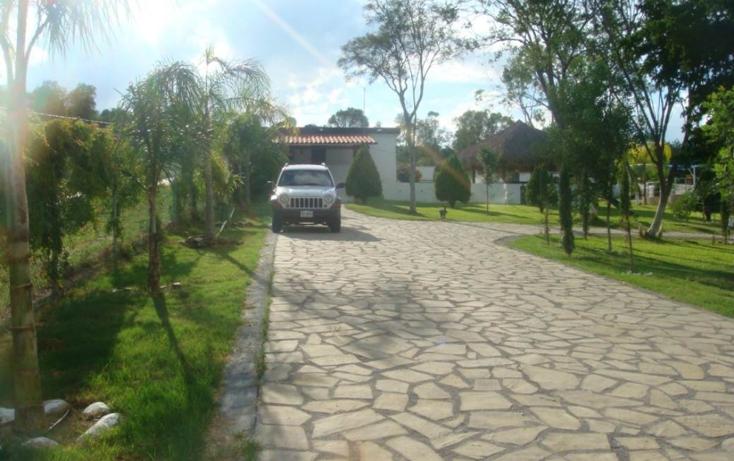 Foto de rancho en venta en  , montemorelos centro, montemorelos, nuevo león, 1118797 No. 02