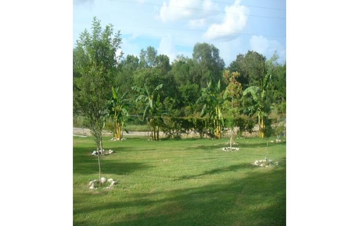 Foto de rancho en venta en  , montemorelos centro, montemorelos, nuevo león, 1118797 No. 04