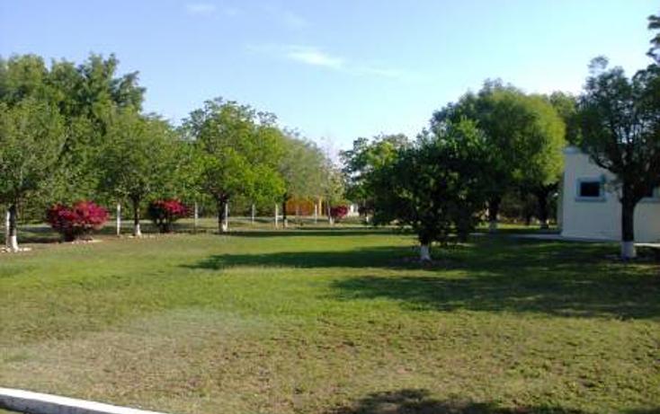 Foto de rancho en venta en  , montemorelos centro, montemorelos, nuevo le?n, 1165935 No. 15