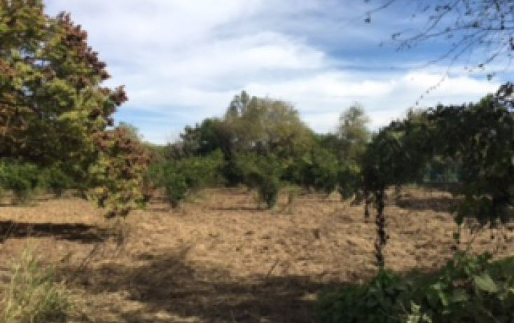 Foto de terreno habitacional en venta en, montemorelos centro, montemorelos, nuevo león, 1518315 no 05