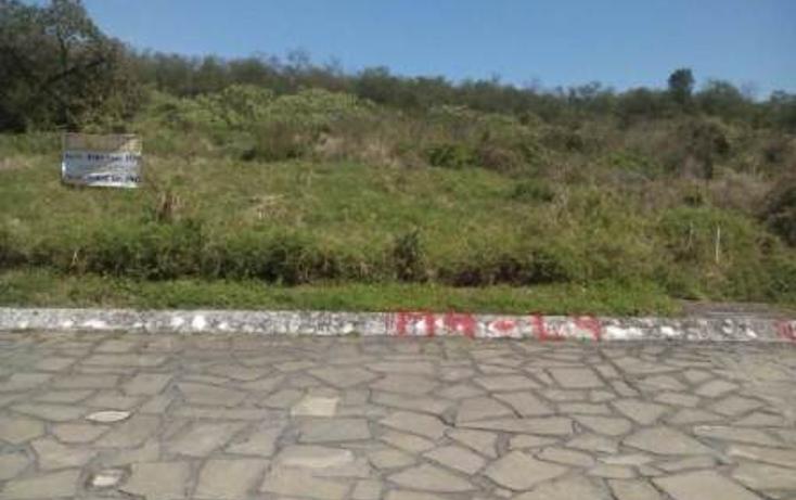 Foto de terreno habitacional en venta en  , montemorelos centro, montemorelos, nuevo le?n, 1554060 No. 03