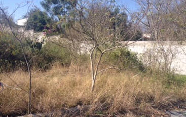 Foto de terreno habitacional en venta en  , montemorelos centro, montemorelos, nuevo león, 1624900 No. 04