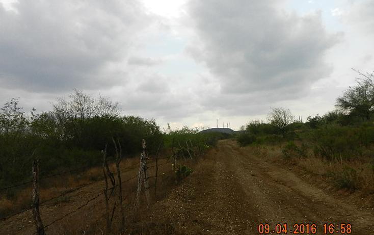 Foto de terreno habitacional en venta en  , montemorelos centro, montemorelos, nuevo león, 1861320 No. 08