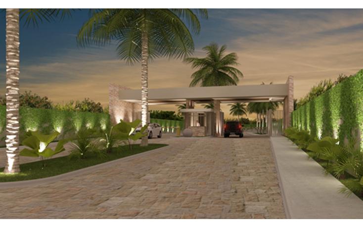 Foto de terreno habitacional en venta en  , monterreal, m?rida, yucat?n, 1116189 No. 02