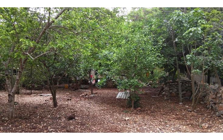 Foto de terreno habitacional en venta en  , montes de ame, mérida, yucatán, 1063615 No. 01