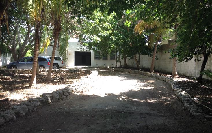 Foto de local en renta en  , montes de ame, mérida, yucatán, 1363253 No. 02