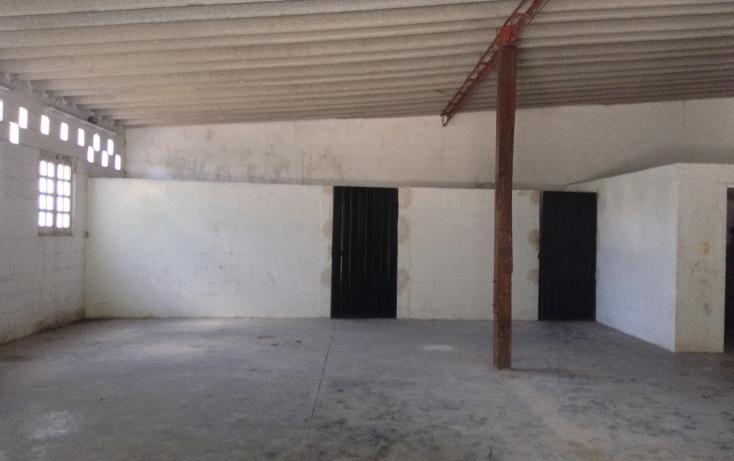 Foto de local en renta en  , montes de ame, mérida, yucatán, 1363253 No. 11