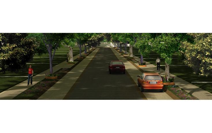 Foto de terreno habitacional en venta en  , montes de ame, mérida, yucatán, 2003724 No. 04
