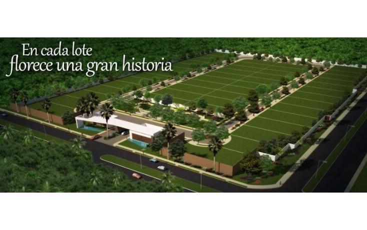 Foto de terreno habitacional en venta en  , montes de ame, mérida, yucatán, 2003724 No. 05