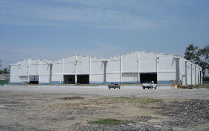Foto de nave industrial en renta en  , moralillo, pánuco, veracruz de ignacio de la llave, 1163681 No. 03