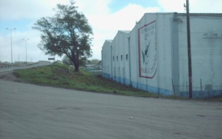 Foto de nave industrial en renta en  , moralillo, pánuco, veracruz de ignacio de la llave, 1319987 No. 03