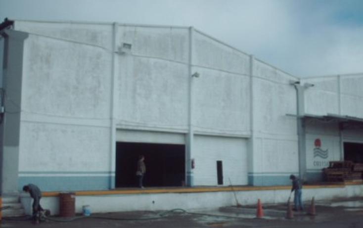 Foto de nave industrial en renta en  , moralillo, pánuco, veracruz de ignacio de la llave, 1319987 No. 04