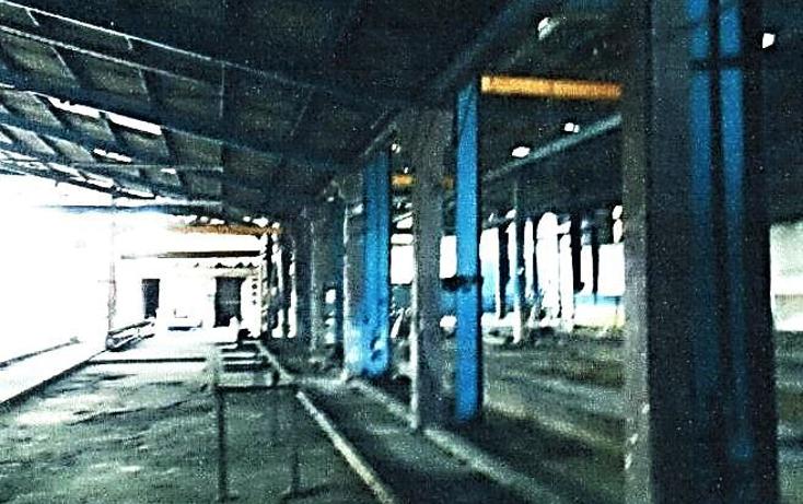 Foto de nave industrial en venta en  , moralillo, p?nuco, veracruz de ignacio de la llave, 946959 No. 03