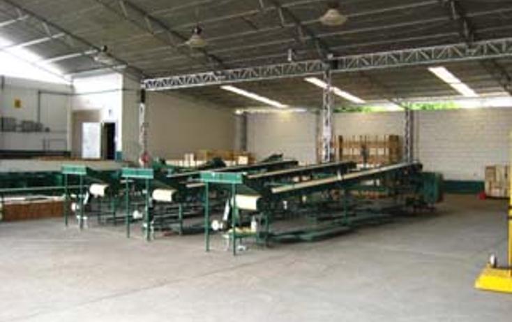 Foto de nave industrial en venta en  , morelos, puente de ixtla, morelos, 1060331 No. 04