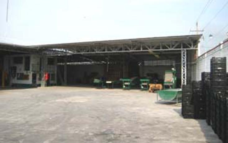 Foto de nave industrial en venta en  , morelos, puente de ixtla, morelos, 1060331 No. 05