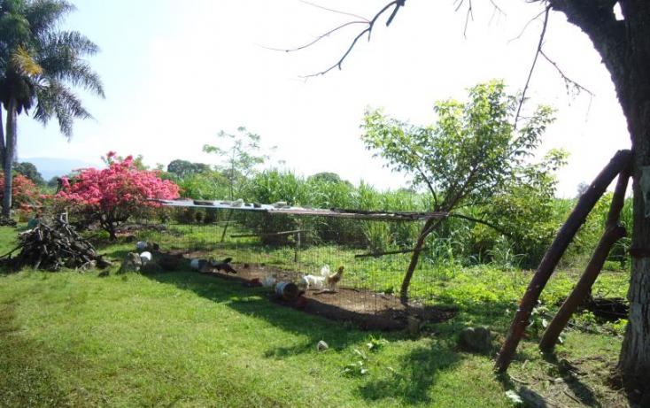 Foto de terreno habitacional en venta en morelos, santa mónica, córdoba, veracruz, 820323 no 05
