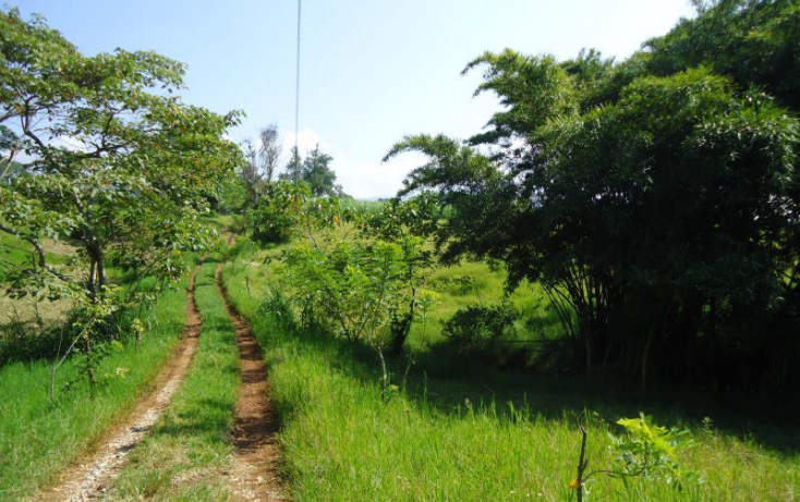 Foto de terreno habitacional en venta en morelos, santa mónica, córdoba, veracruz, 820323 no 11