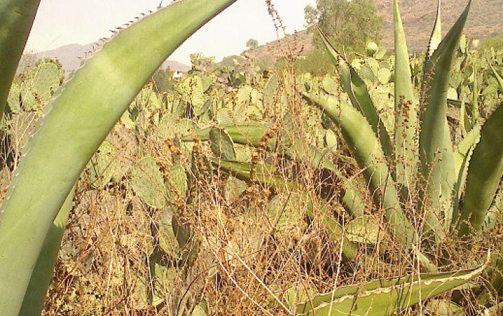 Foto de terreno habitacional en venta en morelos sn, san nicolás tecomatlan, ajacuba, hidalgo, 1712750 no 08