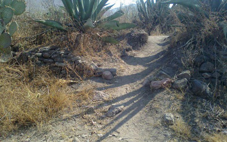 Foto de terreno habitacional en venta en morelos sn, san nicolás tecomatlan, ajacuba, hidalgo, 1712750 no 09