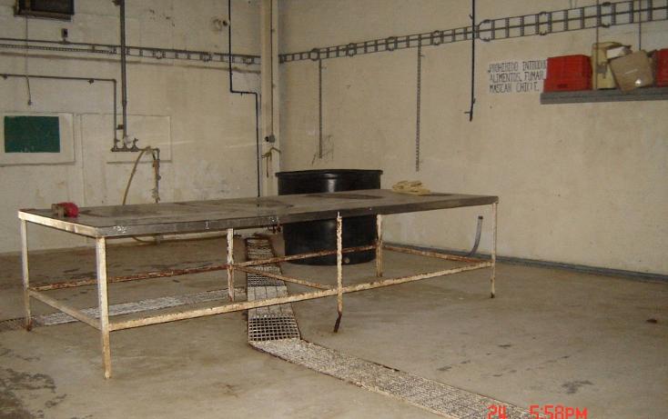 Foto de terreno habitacional en venta en  , morelos, tampico, tamaulipas, 1055309 No. 04