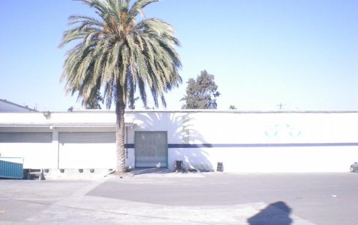 Foto de nave industrial en renta en  , moreno 2da. sección, tijuana, baja california, 1202553 No. 05